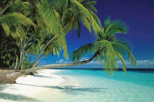 Malediven (Poster)